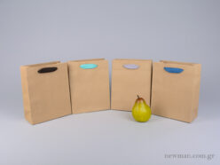 Kraft paper bag with herringbone ribbon handle in 4 colors 18x9x23cm