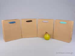 Kraft paper bag with herringbone ribbon handle in 4 colors 22x10x26cm