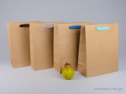 Kraft paper bag with herringbone ribbon handle in 4 colors 26x12x33cm