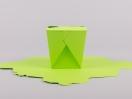 Κουτί origami by Newman σε χρώμα λαχανί