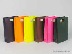 Paper bag with die-cut handle No2 colors