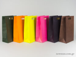 Paper bag with die-cut handle No3 colors