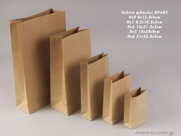 Brown/Kraft Paper Gift Bags or Envelope Bags