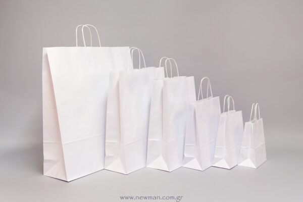 Carrier Paper Bags with twisted handle in white color