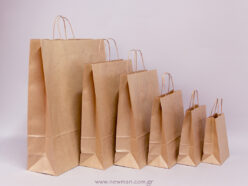 Carrier Paper Bags with twisted handle