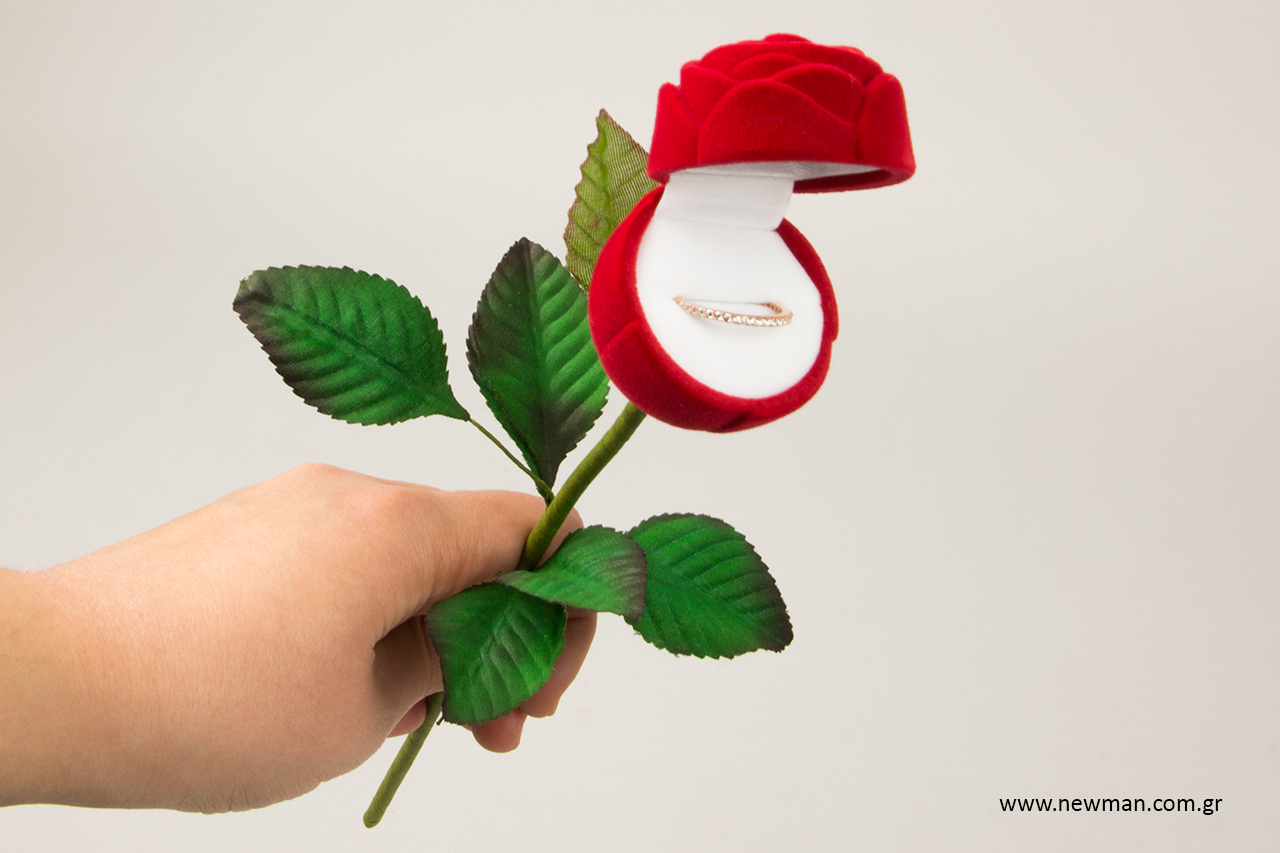 valentines-jewellery-boxes-newman_4242