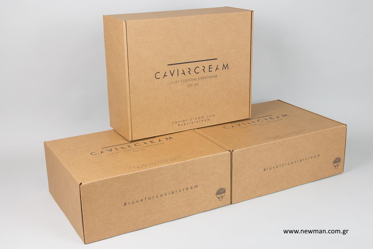 Τυπωμένα κουτιά συσκευασίας ταχυδρόμησης με εταιρική επωνυμία.